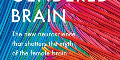 The Gendered Brain: The new neuroscience that shatters the myth of the female brain by Gina Rippon - cover pic