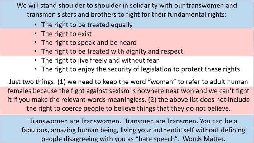 We will stand shoulder to shoulder in solidarity with our transwomen and transmen sisters and brothers to fight for their fundamental rights.