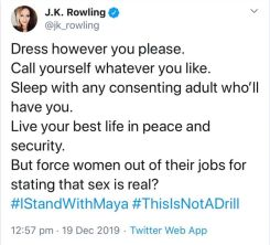 J K Rowling's infamous 'sex is real' tweet