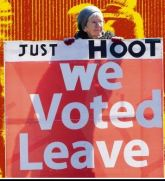 Banner - Just HOOT- we voted Leave