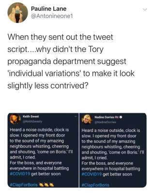 Screen shots of identical comments apparently applauding Mr Johnson
