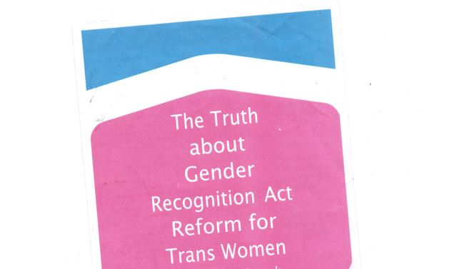 Baby pink and baby blue leaflet that reads 'The Turth about Gender Recognition Act Reform for Trans Women'